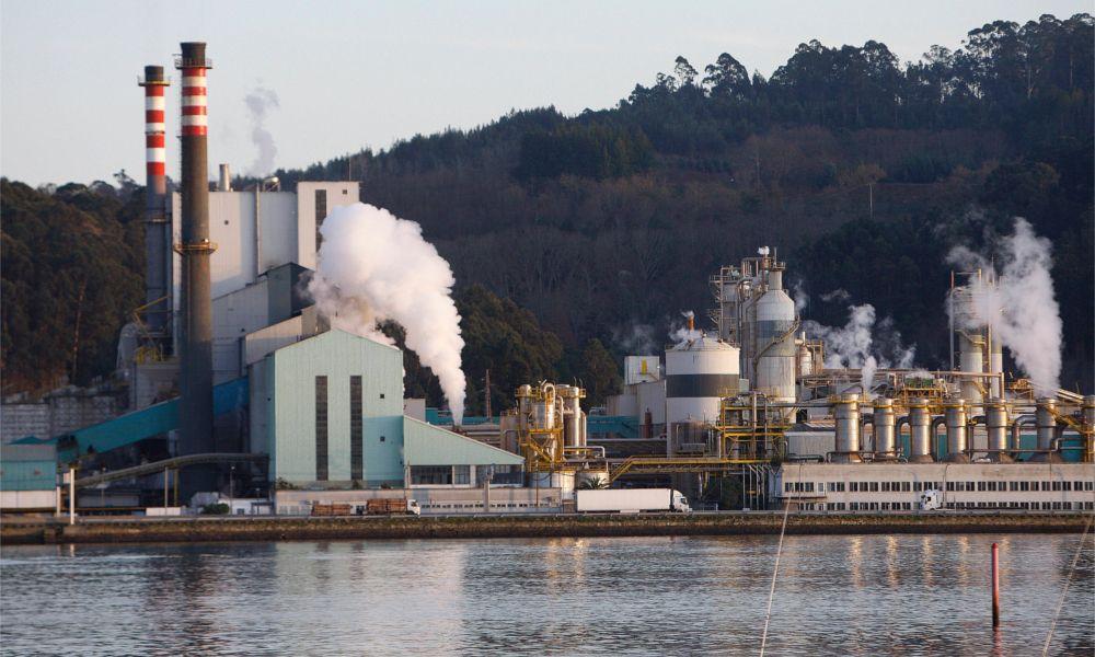 Ence cierra la venta de toda su producción de celulosa para 2018