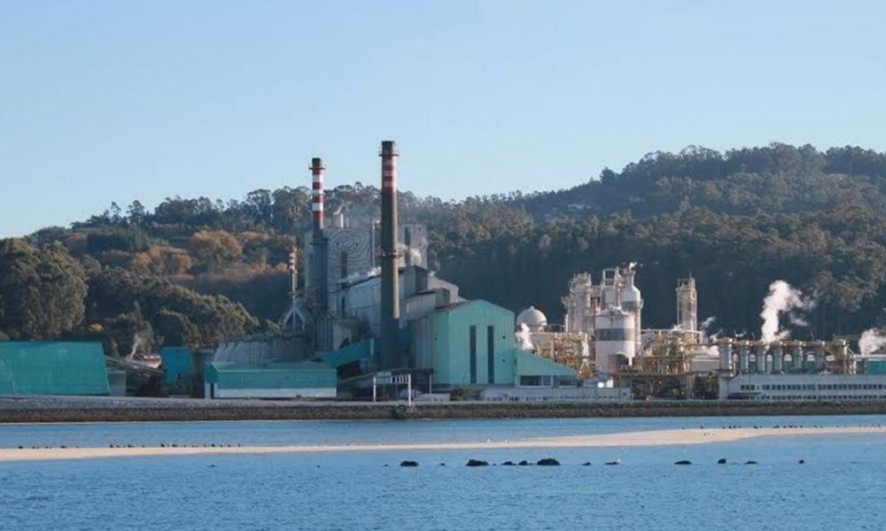 Ence estima en 185 millones el impacto de un cierre en Pontevedra
