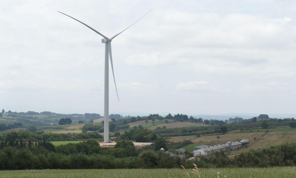 Cuatro entidades llevan a Fiscalía los eólicos de Endesa en Paradela