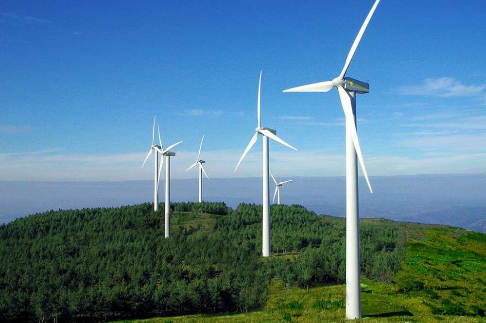 La gallega Greenalia salta al MAB como referente de la energía verde
