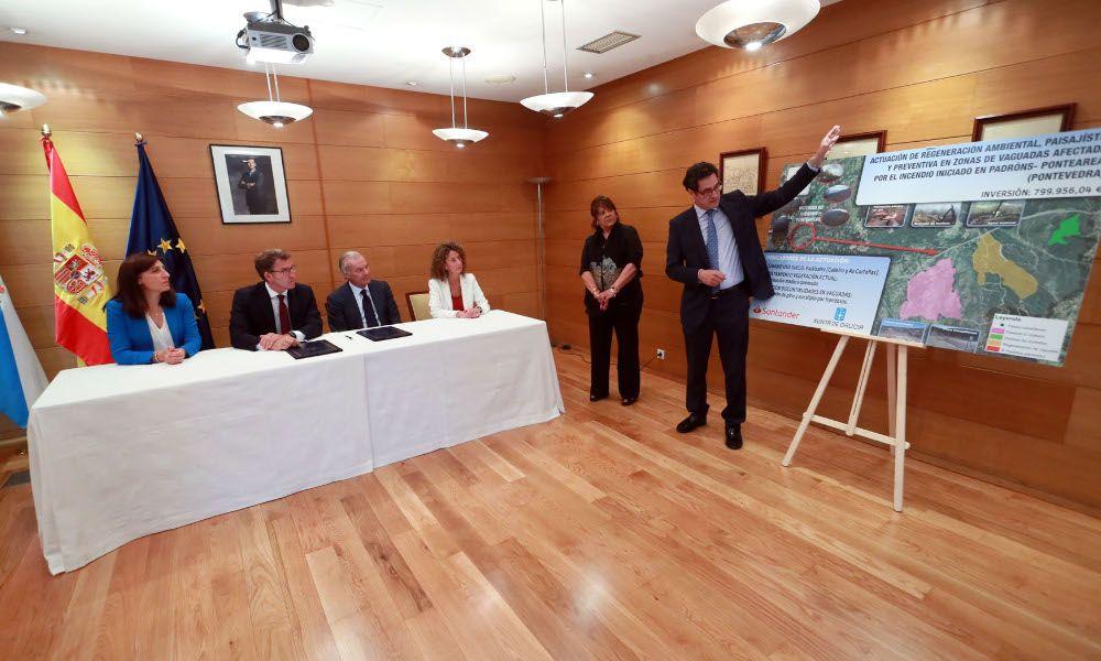 El Santander plantará 105.000 abedules en zonas quemadas por los incendios