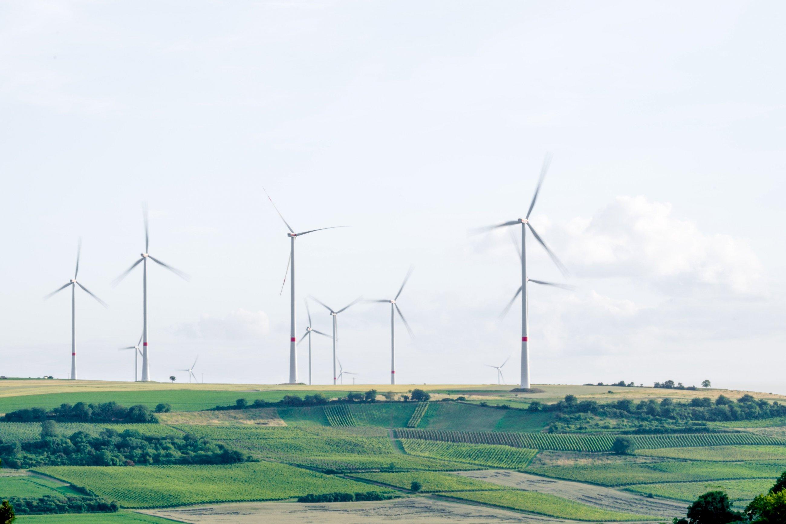 Naturgy dice adiós a los números rojos y apuesta por las renovables