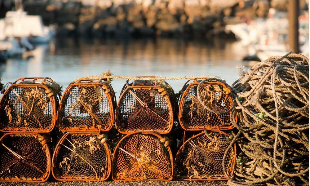 Imagen de archivo de nasas para la pesca