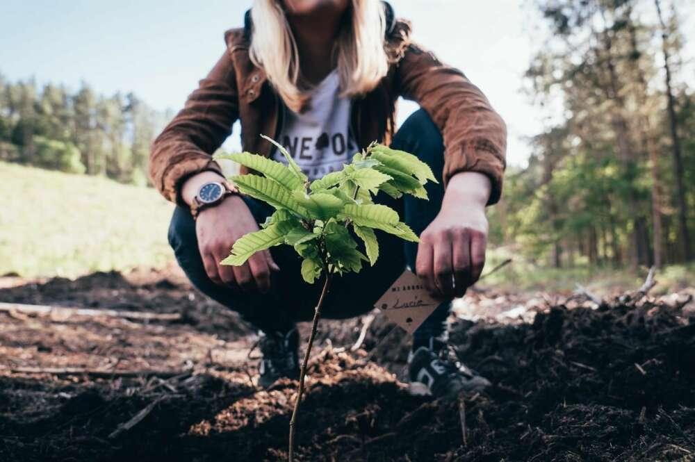 La moda sostenible germina en Galicia (y lejos de Inditex)