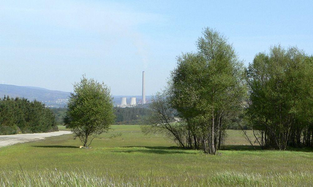Alcoa, Gas Natural y Endesa lavan su imagen en los montes gallegos