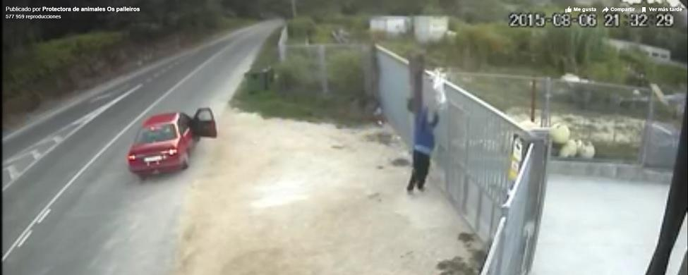 El vídeo del abandono más cruel de un perro en una protectora