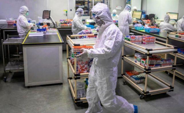 Un grupo de investigadores ha descubierto que el coronavirus es capaz de ocultar su genoma para que no sea reconocido por el sistema inmunológico./ EFE