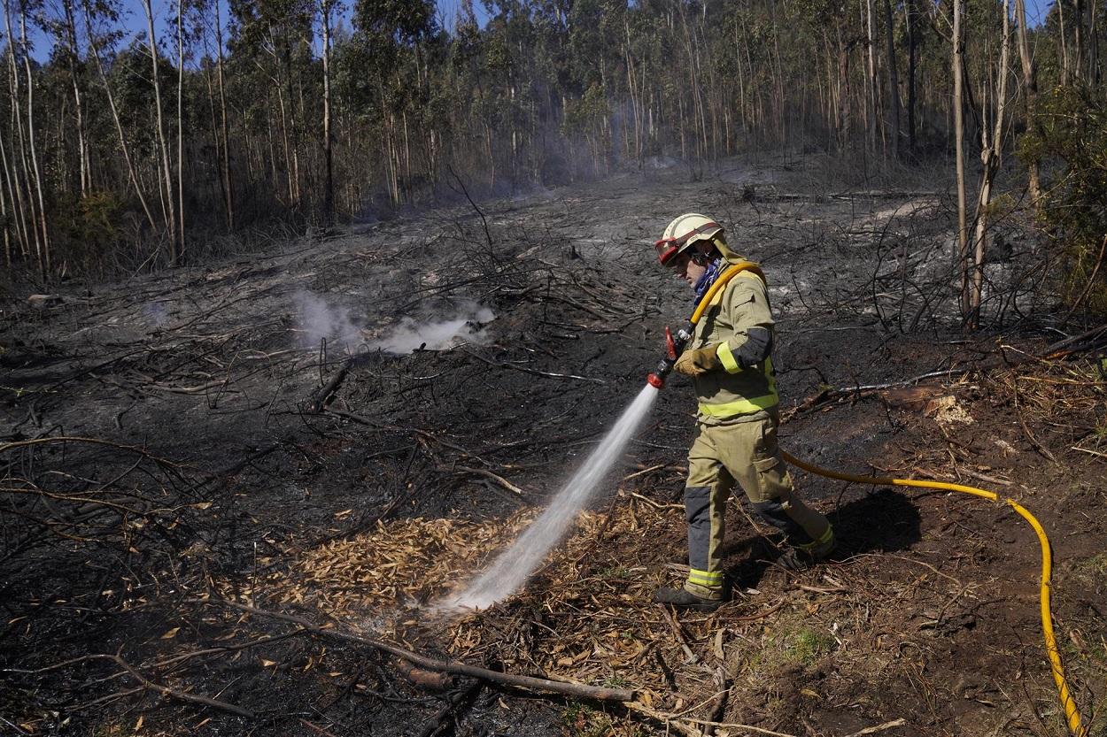 Galicia da por controlado el incendio forestal registrado en la parroquia compostelana de Filgueiras. Foto: Europa Press