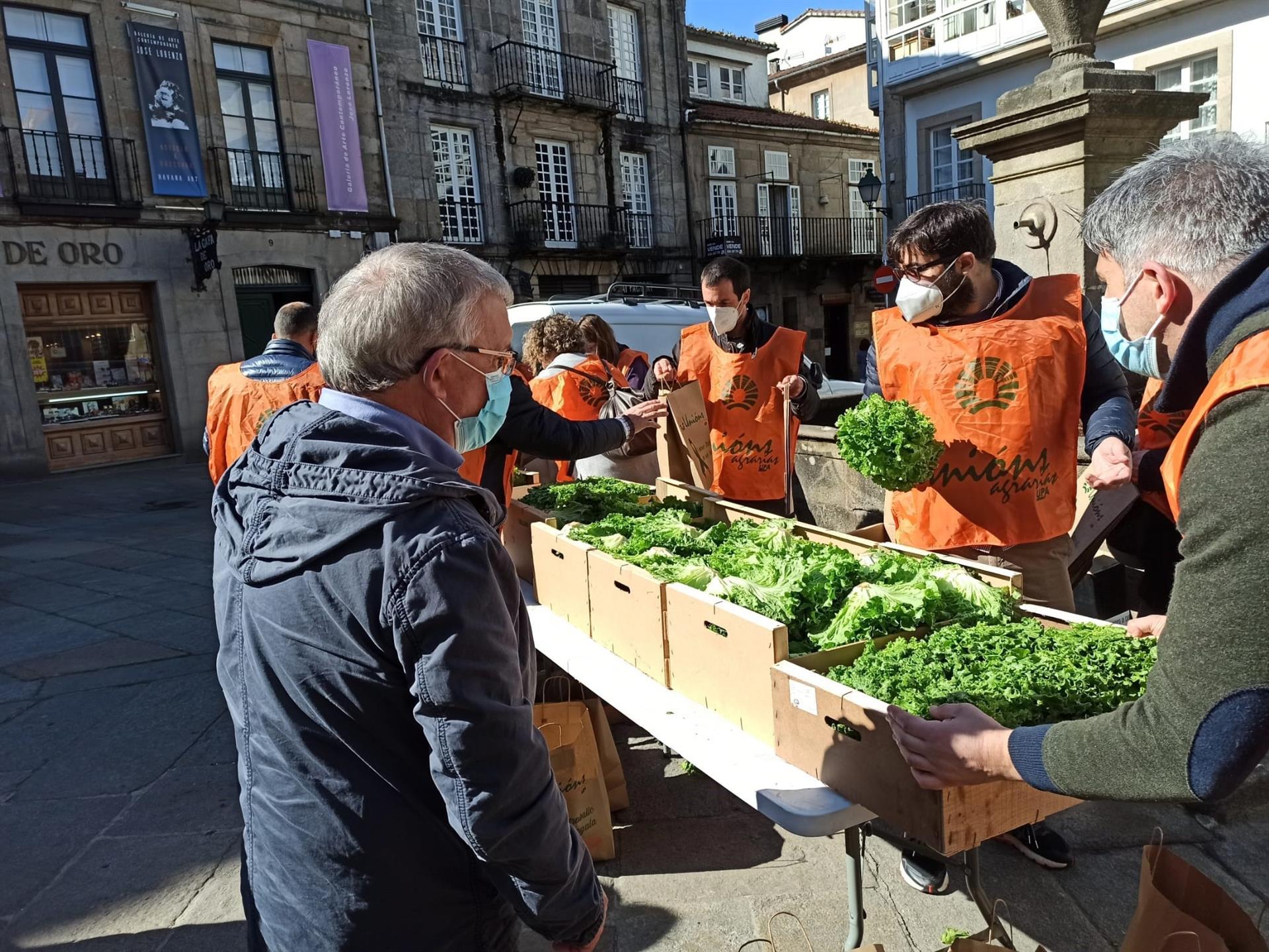 Un grupo de agricultores regala lechugas en la Praza do Toural de Santiago / E.P.