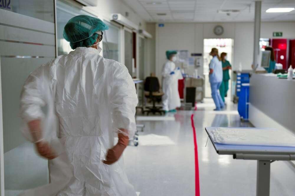 """Con la destrucción del planeta, estamos ante un """"cuadro clínico"""" global muy preocupante que nos ha llevado, directa o indirectamente, hasta la pandemia actual del Covid-19. EFE/Miguel Toña"""