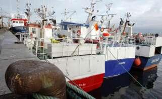 Luz verde del Consejo de Ministros al nuevo acuerdo bilateral de pesca entre España y Portugal