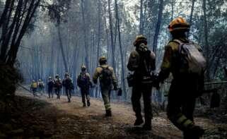 Brigadistas en A Pobra do Brollón (Lugo) / EFE