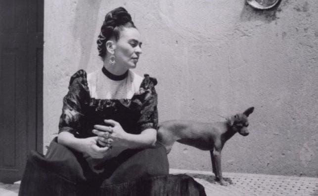 2019 Frida Kahlo Appearances 2