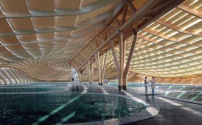acuario shanghai 4 Foto Ennead Architects