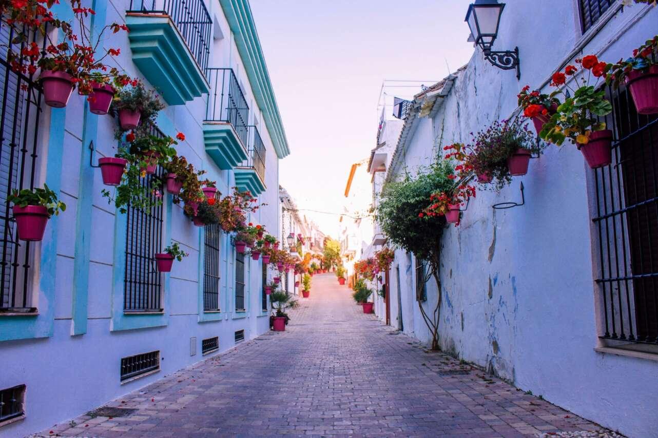 Calles de flores | AdobeStock