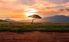 África de Norte a Sur a través de ocho libros viajeros