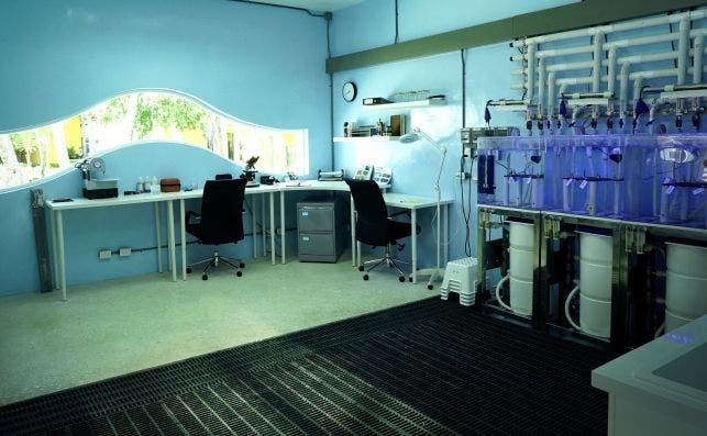 Coral Lab Interior