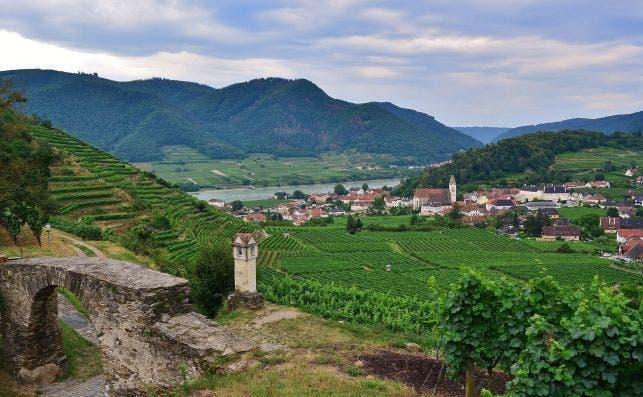 Danubio. Foto Pixabay.
