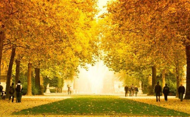 flandes otoño