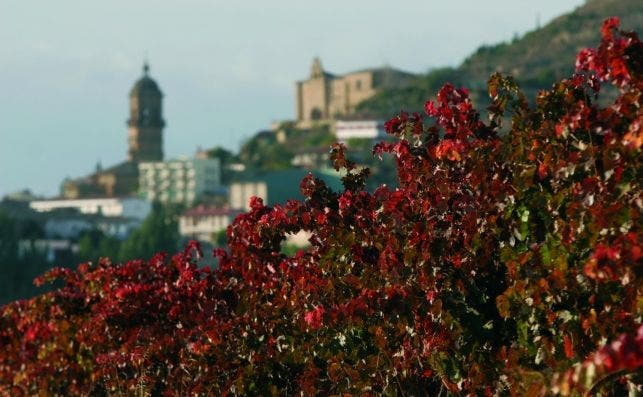 Labastida, Rioja Alavesa.