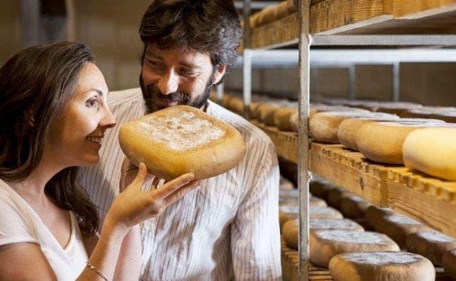 queso mahon menorca turismo de menorca