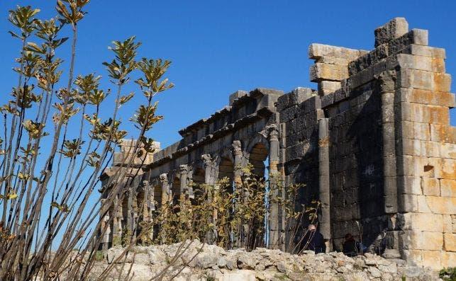 Ruinas romanas de Volubilis. Foto Pixabay