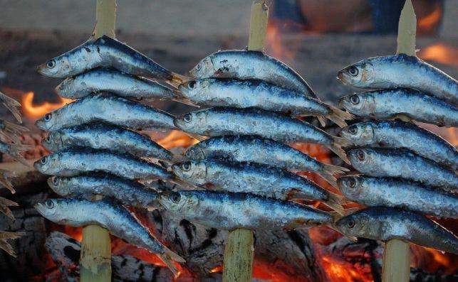 Espeto de sardinas. Fotografía: Gavilla