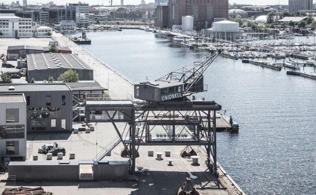 TheKrane. Foto Rasmus Hjortshøj