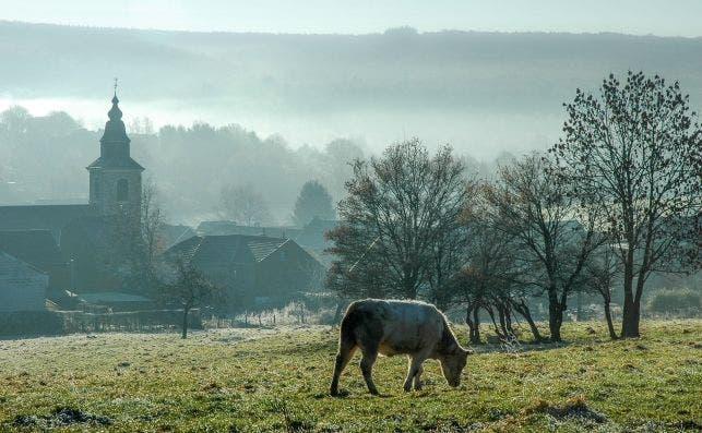 Valonia nos regala impresionantes paisajes siempre verdes. Foto Turismo de Valonia.