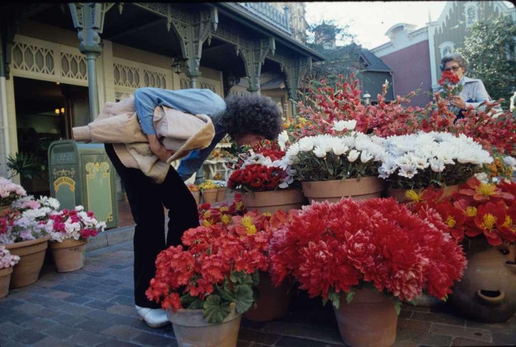 Brian May, Disneyland 1978 Foto Neal Preston - Editorial RAP 20