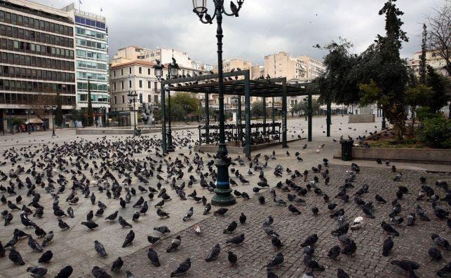 Una plaza en Atenas, Grecia, el 23 de marzo de 2020, llena de palomas y no de personas | EFE/EPA/AB