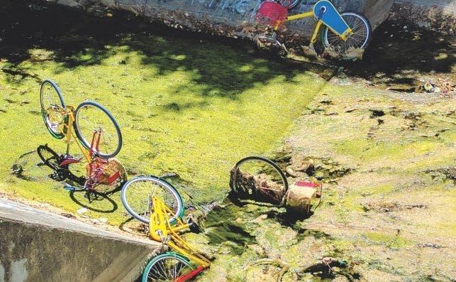 goolge bike rio