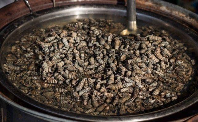 ¿Son los insectos lo más raro que te puedes encontrar en un supermercado?