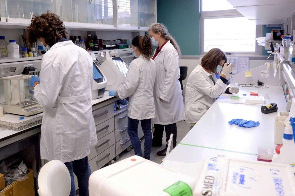 Un grupo de científicos trabaja en diferentes estudios sobre la expansión de la Covid-19. EFE/Archivo