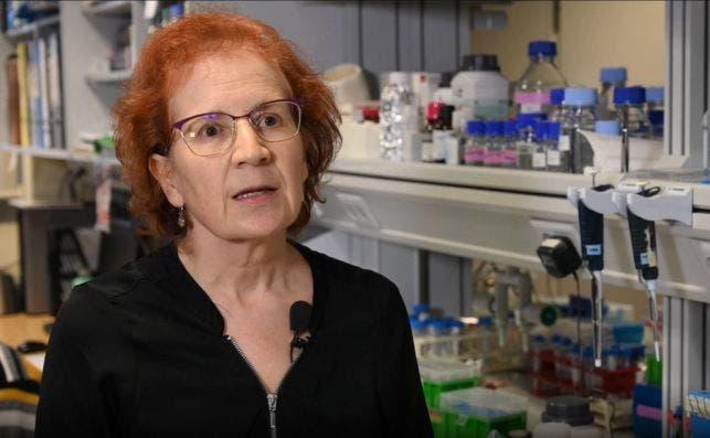 La viróloga e investigadora del CSIC, Margarita del Val./ CSIC