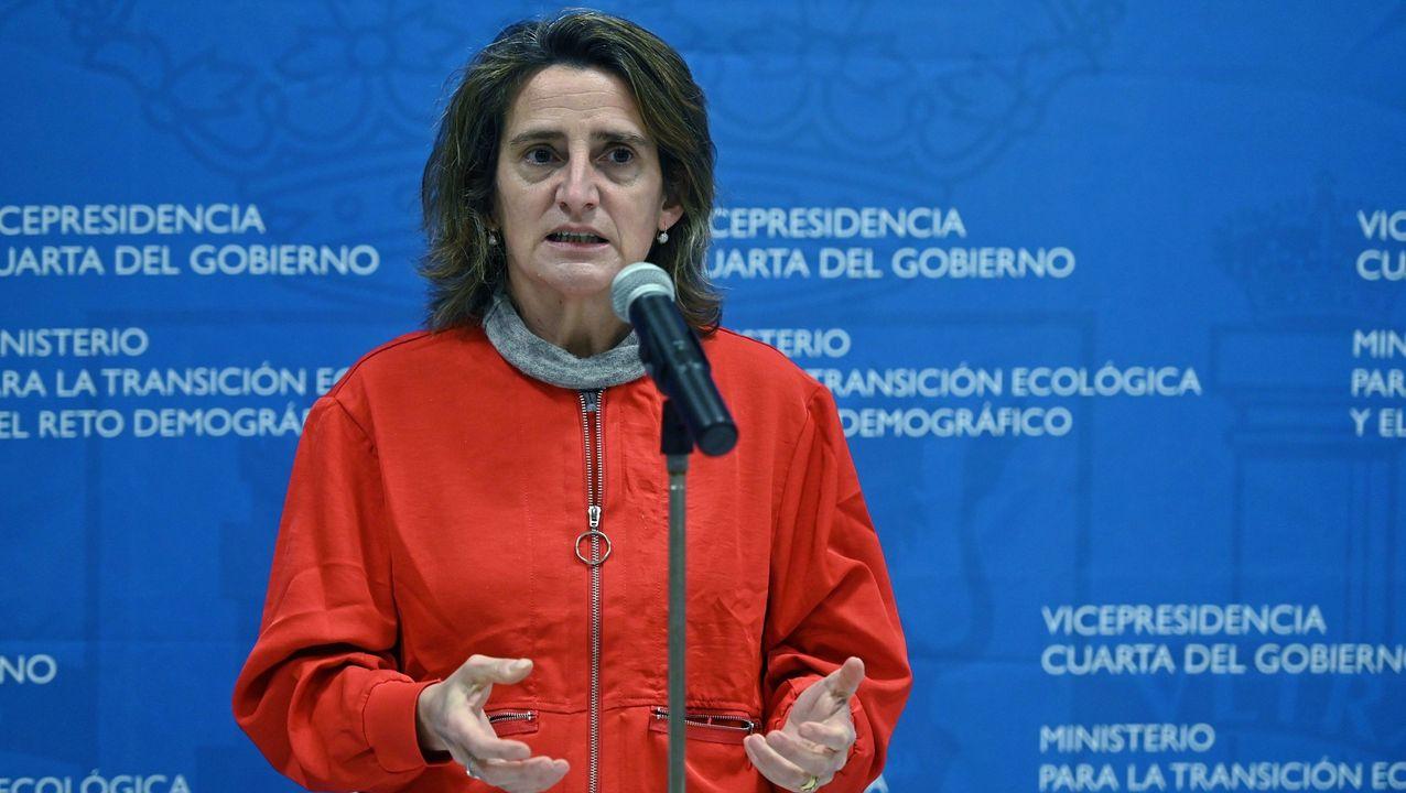 La ministra de Transición Ecológica, Teresa Ribera. EFE/Fernando Villar/Archivo