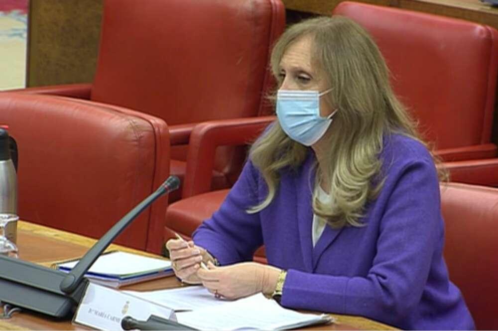La periodista Carmen Sastre durante su comparecencia en el Congreso de los Diputados, el 14 de enero de 2021, como candidata al consejo de administración de RTVE   Congreso/Archivo