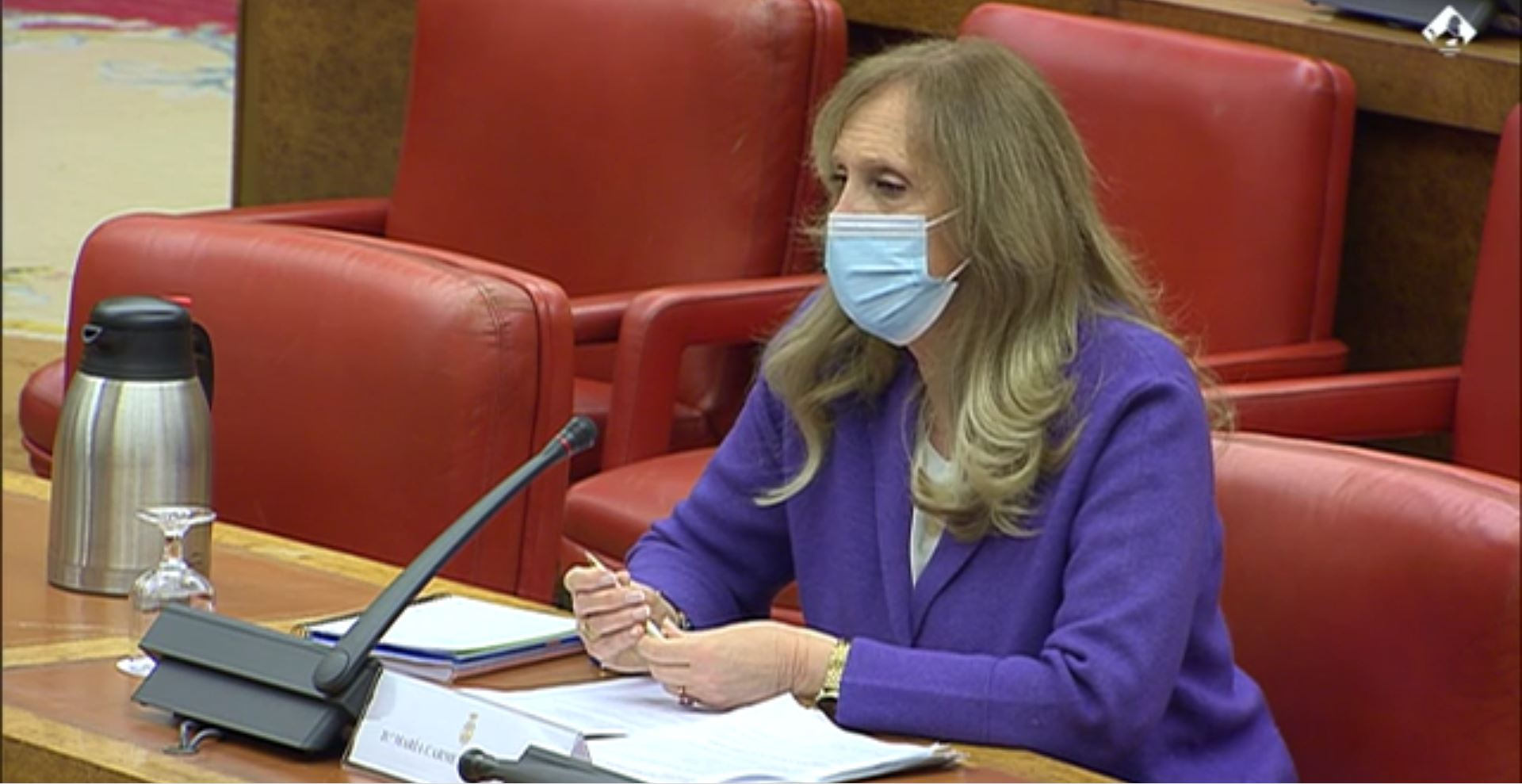 La periodista Carmen Sastre durante su comparecencia en el Congreso de los Diputados, el 14 de enero de 2021, como candidata al consejo de administración de RTVE | Congreso/Archivo