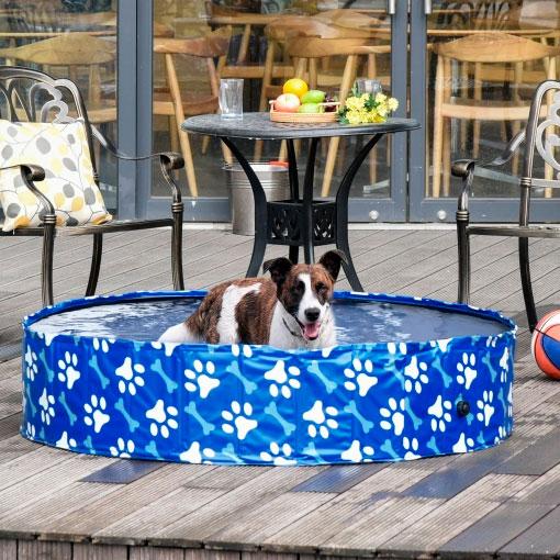 Piscina para perros de Carrefour