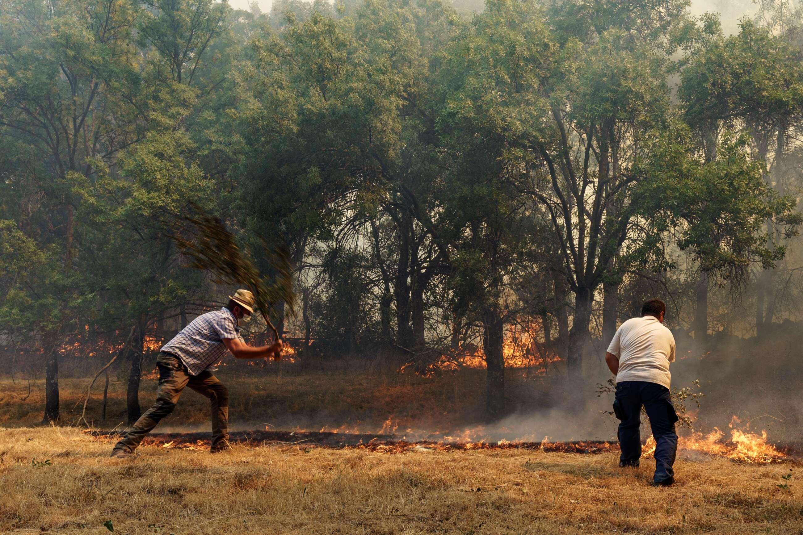 Incendio de Ávila: el PP sigue la estrategia de Almeida con Filomena para blindar las ayudas. // EFE